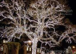 agac isik susleme buyuk 225 260x185 - Ağaç ışık süsleme