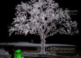 agac isik susleme buyuk 508 260x185 - Ağaç ışık süsleme